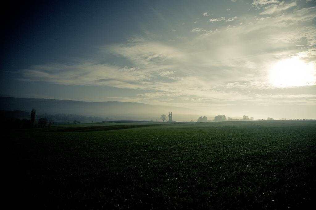 Утром или вечером — вечный вопрос